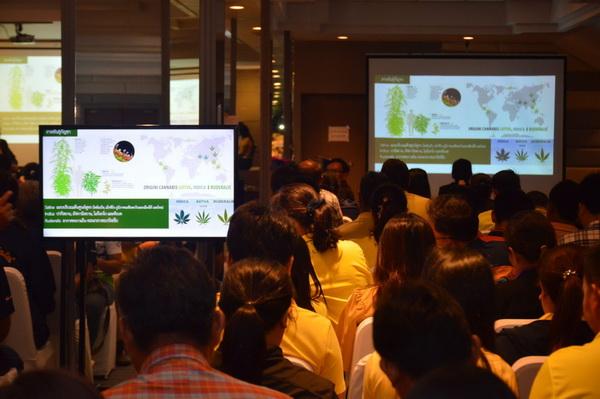 มากสุดในไทย..ชาวบุรีรัมย์ยื่นแจ้งครอบครองกัญชาเพื่อการแพทย์กว่า 5,000 คน
