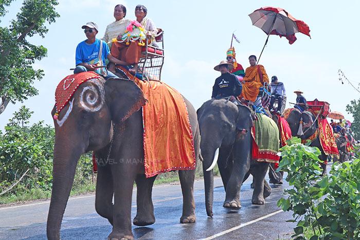 บรรยากาศขบวนแห่นาคช้าง