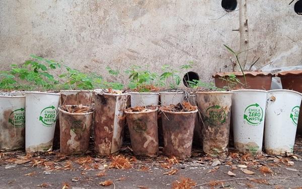 "Zero-waste cup ""ลดขยะพลาสติก"" เลือกแก้วนี้ดีต่อโลก"