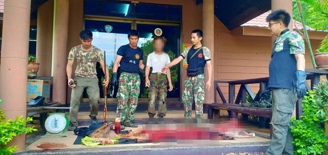 รวบชาวบ้าน! ลักลอบล่าสัตว์ป่าในเขตอุทยานแห่งชาติภูซาง พบซากเก้ง-อ้น รวมกันหนักกว่า 22 กก.