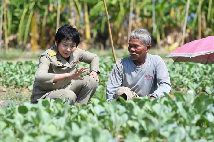 มกอช.ตอกย้ำบทบาทด้านสินค้าเกษตรและอาหารของประเทศ
