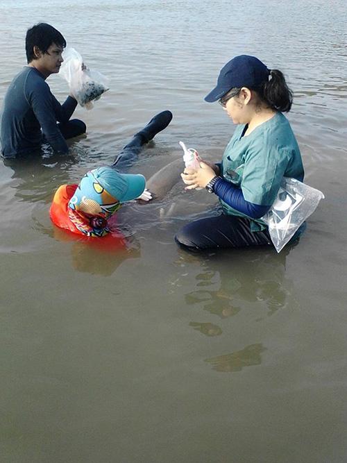 เจ้าหน้าที่ผู้เสียสละผู้ทำหน้าที่แม่คอยป้อนนมน้องมาเรียม (ภาพจาก : อุทยานแห่งชาติหาดนพรัตน์ธารา- หมู่เกาะพีพี จ.กระบี่)