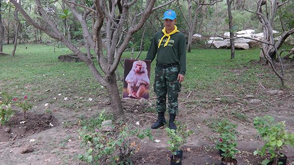 """ไอเดีย หลอก """"เจ้าจ๋อ"""" แขวนรูปลิงกัง หวังให้กลัวไม่ให้มารื้อต้นไม้ที่ปลูกใหม่"""