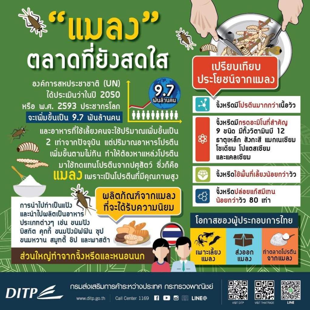 """UN ชี้อาหารจาก """"แมลง"""" โตต่อเนื่อง โอกาสธุรกิจไทยไม่ควรมองข้าม"""