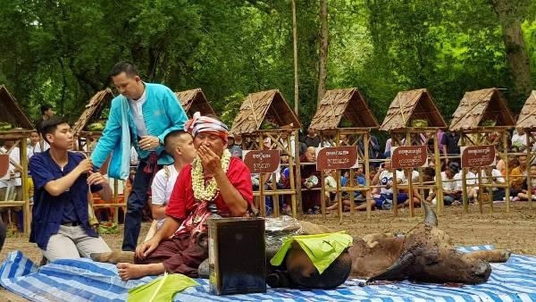 นักท่องเที่ยว-ชาวเชียงใหม่ แห่ร่วมพิธีเลี้ยงดงบางสรวงผีปู่แสะย่าแสะ สืบตำนานยักษ์ผู้พิทักษ์ป่าดอยสุเทพ