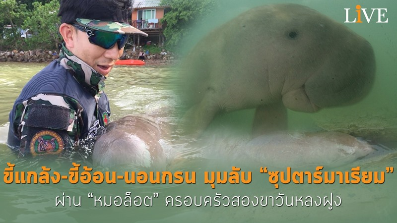 ขอบคุณภาพ FB : Shin Arunrugstichai