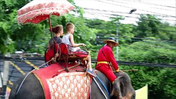 วังช้างฯ ถูกสั่งย้ายภายใน 30 วัน เชื่อว่าไม่พอใจเกี่ยวกับการคัดค้านตัดหัวเสาตะลุง