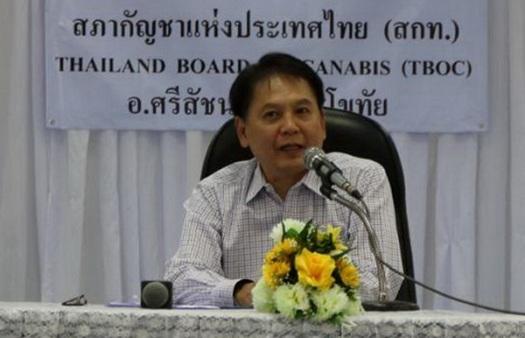 """ศิวิไลซ์เกิดแน่!สภากัญชาสุโขทัย ฝากรัฐบาลใหม่ดันคนไทยเข้าถึง""""กัญชารักษาโรค"""""""