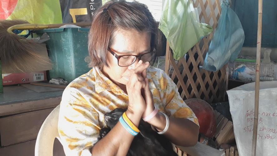 หยุดเถอะ! ป้าป่วยมะเร็งวอนคนใจร้าย วางยาเบื่อฆ่าแมวตาย 11 ตัว ส่วนหมาช่วยทันหวุดหวิด