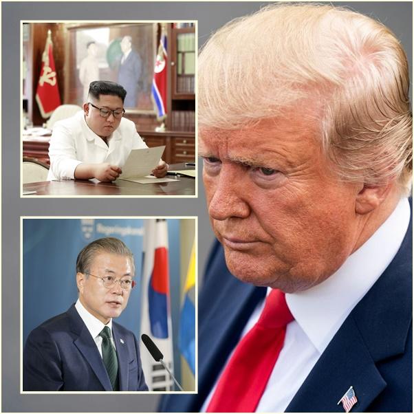 "In Clips :ทรัมป์เตรียมเยือนเกาหลีใต้ คุยปธน.มุนเรื่อง ""ปลดนิวเคลียร์เกาหลีเหนือ"" หลังประชุมซัมมิต G20"