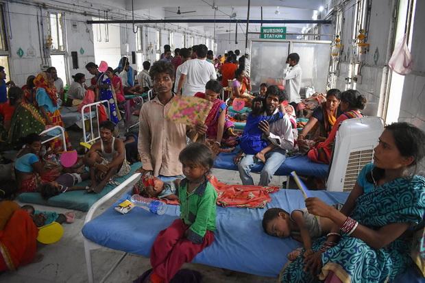 ภัยร้ายจากลิ้นจี่!?ยอดเด็กตายจากไข้สมองอักเสบพุ่งเหนือ150ศพในอินเดีย