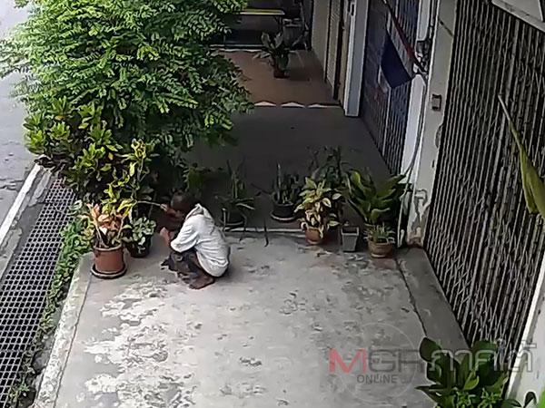 กล้องจับภาพชัด! ชายสูงวัยปลดทุกข์หนักหน้าบ้านคนอื่นกลางเมืองหาดใหญ่