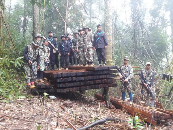 มอดไม้ไม่มีหมด ! พบไม้จำปาป่าแปรรูปซุกป่าอุทยานฯดอยภูคาเกือบ 200 แผ่น