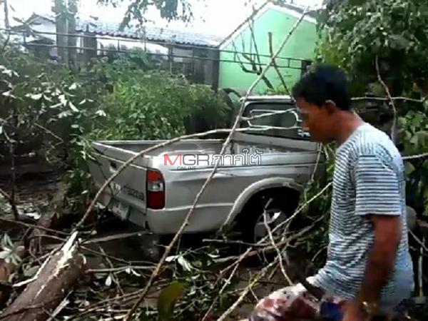 ฝนตกลมกรรโชกแรงพัดต้นไม้ล้มทับรถยนต์พัง บ้านเสียหาย 10 หลังที่สุไหงโก-ลก