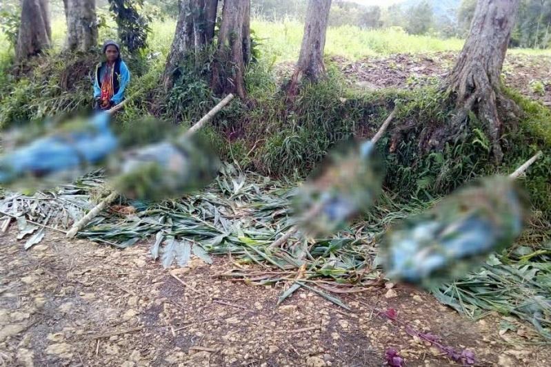 สลด! ชนเผ่าใน 'ปาปัวนิวกินี' ปะทะเดือด ตายหมู่ 24 ศพ