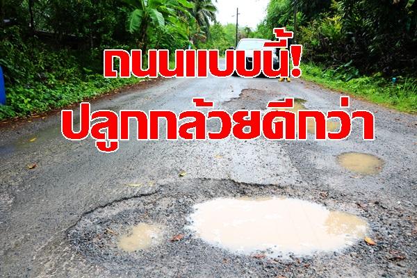 ชาวบ้านโวย! ถนนชำรุดเป็นหลุมเป็นบ่อนาน10ปี วอนหน่วยงานเกี่ยวข้องเร่งซ่อม ขู่ก่อนทนไม่ไหวปลูกกล้วย มะพร้าว บนถนน