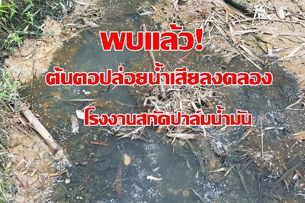 พบแล้ว! น้ำเสียไหลงลงคลองช้างตาย จ.กระบี่ ต้นตอมาจากโรงงานปาล์ม สั่งแก้ไขด่วน ฟื้นฟูสภาพ ปล่อยพันธุ์สัตว์น้ำ