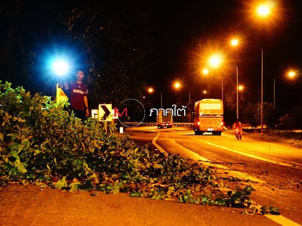 ลมกระโชกแรงพัดต้นไม้ล้มขวางถนนที่พัทลุง ชาวบ้านต้องช่วยลากออกเปิดเส้นทาง
