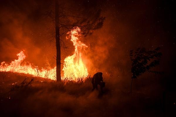 เกิดไฟป่าในภาคกลางโปรตุเกส ลิสบอนส่งนักดับเพลิงกว่า 1,000 เข้ากอบกู้สถานการณ์