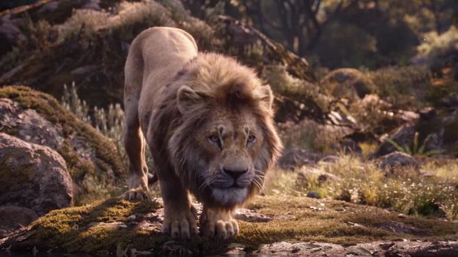 Lion King ถล่มรายได้ 531 ล้านเหรียญฯ Endgame หนังทำเงินอันดับ 1 ตลอดกาล