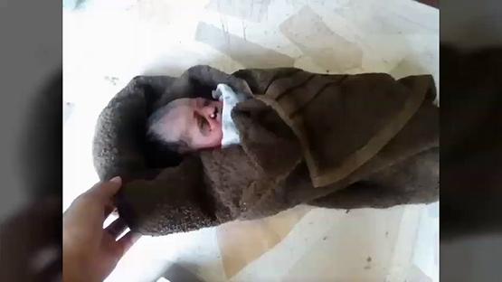 สลด!แม่ใจร้ายนำทารกแรกเกิดใส่ถุงดำทิ้งถังขยะ ย่านปากเกร็ด