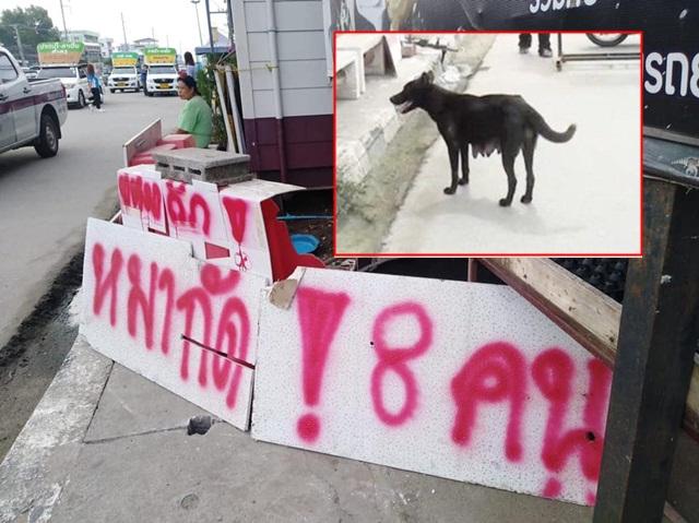 """""""เจ้าดำ"""" สุนัขแม่ลูกอ่อนถูกจนท.จับแล้ว หลังไปกัดชาวบ้านนับ 10 ราย"""