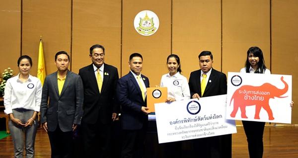 องค์กรพิทักษ์สัตว์ฯ ยื่นข้อเรียกร้องกระทรวงทรัพย์ฯ ระงับส่งออกช้างไทย