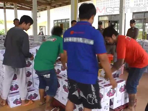กลุ่มผู้คัดมังคุดเมืองคอนแฉลูกไม้ทางการ ตั้งงบซื้อมังคุด กก.ละ 20 แต่ซื้อจริงแค่ 8-12 บาท