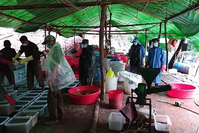จนท.พม่าบุกทลายแหล่งผลิตยาบ้า-ยาไอซ์ขนาดใหญ่กลางป่ารัฐชาน