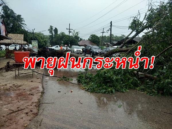 พายุฝนกระหน่ำบ้านเรือนประชาชนใน อ.ไชยา เสียหายยับ ผู้ว่าฯสุราษฎร์สั่งเยี่ยวยาผู้ประสบภัยเร่งด่วน