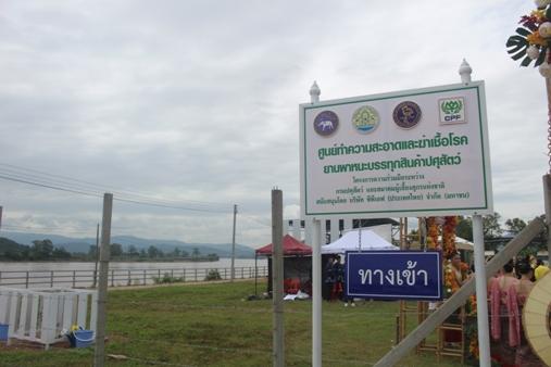 ผวาหมูพม่าตายเกลื่อน-ทิ้งซากลงคลองห่างไทย 36 กม. ปศุสัตว์ฯคุมเข้มสกัดอหิวาต์ลาม