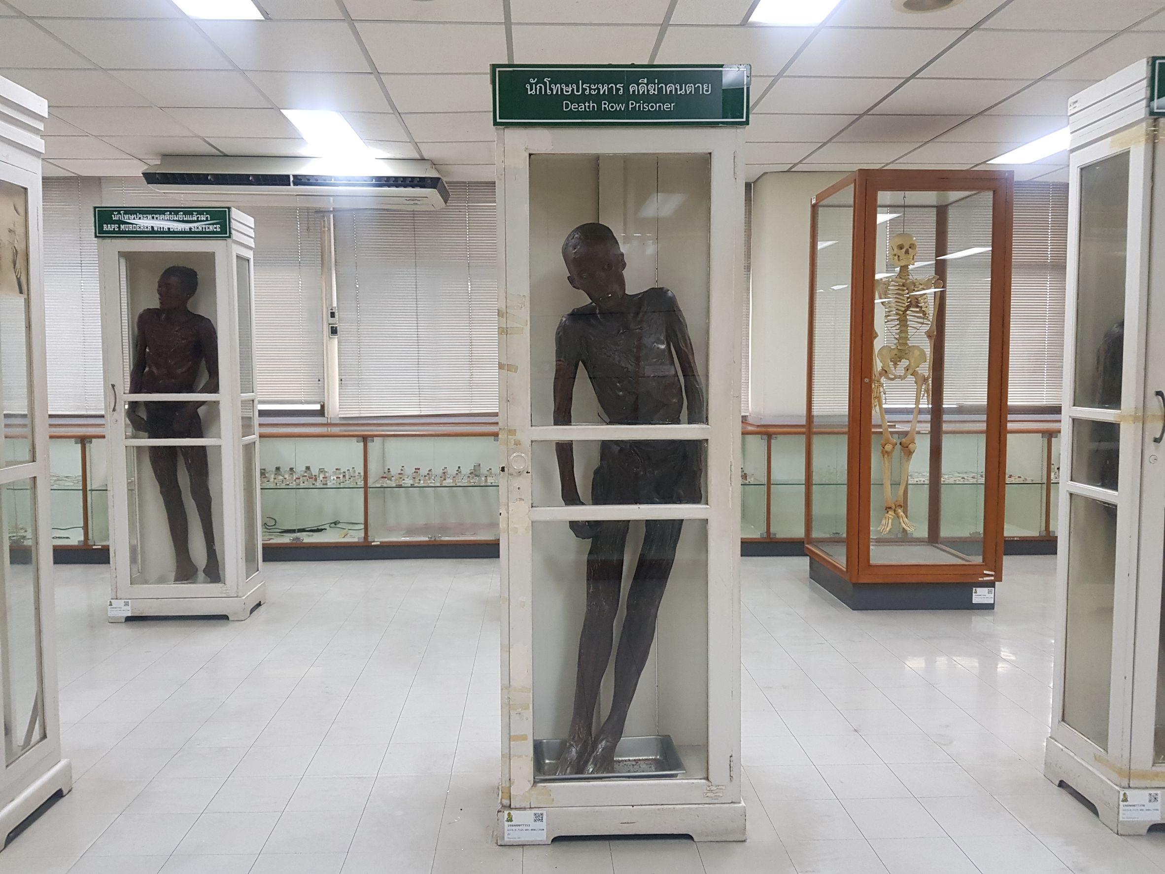 """ศิริราช ย้ายร่าง """"ซีอุย"""" ออกจากพิพิธภัณฑ์แล้ว ส่วนจัดการร่างยังไม่ลงตัว"""