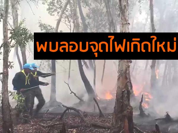 มทภ.4 สั่งทหารจัดทีมชุดเคลื่อนที่เร็วเข้าเผชิญเหตุ จ่อปรับแผนสูบน้ำสู้ไฟป่าพรุ