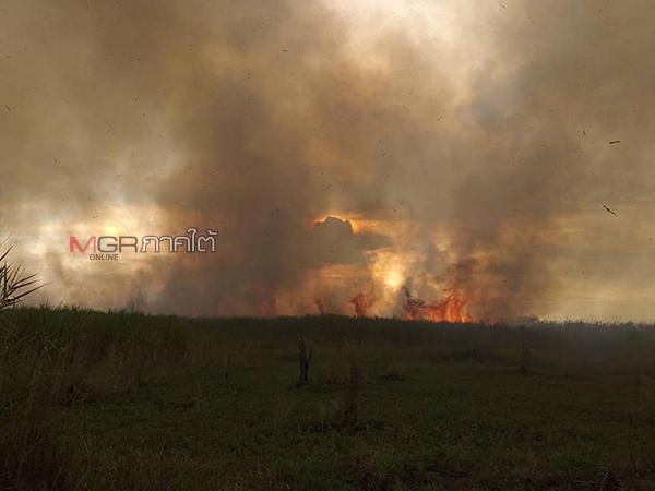 """""""ครูเลี่ยม"""" อดไม่อยู่! ซัดทุนไทยไร้สำนึก ไร้สุนทรียกำกับชีวิต เผาป่าทำลายได้ทุกสิ่ง"""