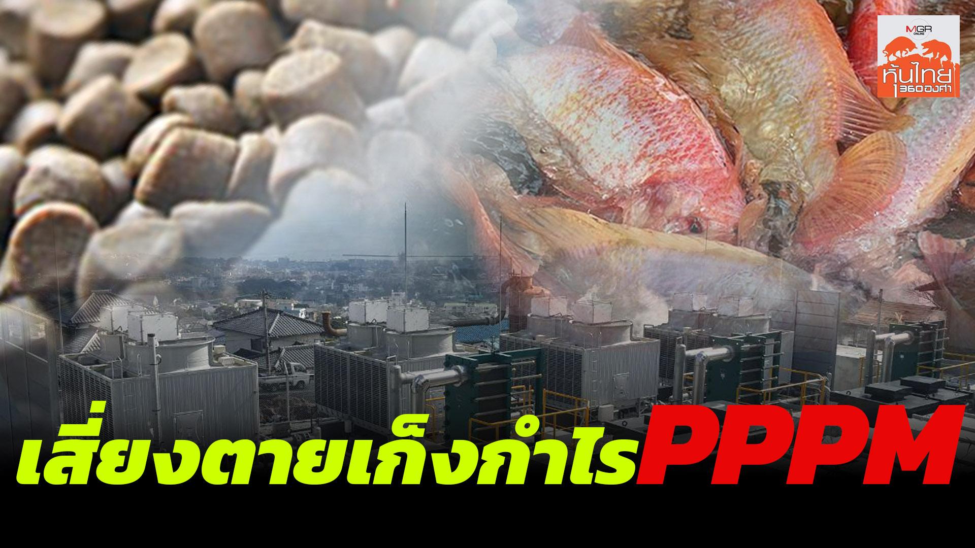 เสี่ยงตายเก็งกำไร PPPM / สุนันท์ ศรีจันทรา