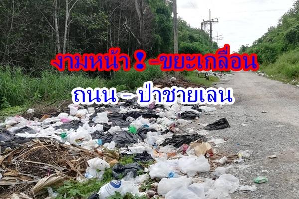งามหน้า ! ลักลอบทิ้งขยะเกลื่อนถนนใกล้ศูนย์ราชการกระบี่พบถุงพลาสติก – โฟมโผล่ในทะเล