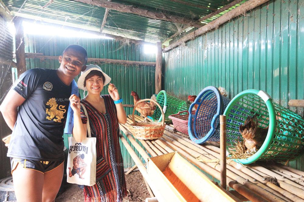 นักท่องเที่ยวร่วมทำกิจกรรมเก็บไข่ไก่กับบัวขาว