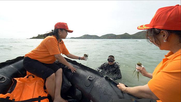 กองทัพเรือจับมือหน่วยราชการชลบุรี ระดมบุคลากร 3 พัน ดำเนินโครงการอนุรักษ์แนวปะการังและสิ่งมีชีวิตใต้ทะเลไทย ตามพระดำริเจ้าฟ้าสิริวัณณวรี