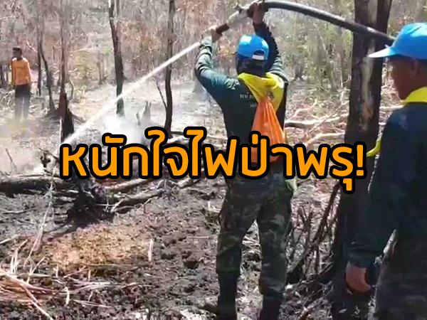 หนักใจปัญหาไฟป่าพรุควนเคร็งลามมุดใต้ดิน จนท.เร่งอัดน้ำควบคุมต่อเนื่อง