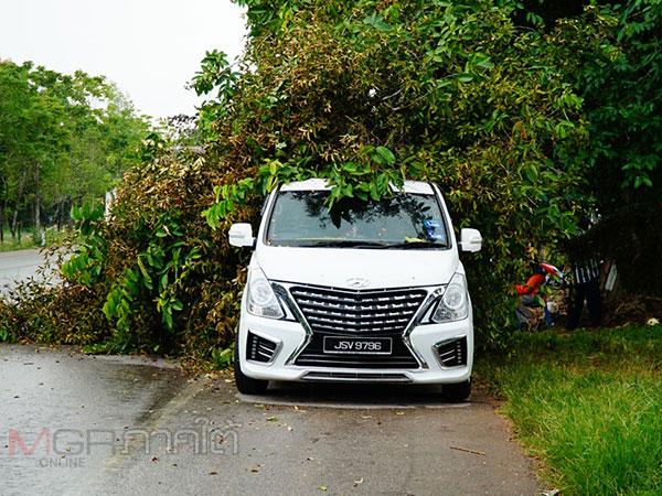 สุดซวย! หนุ่มมาเลย์จอดรถแวะซื้อทุเรียนถูกต้นไม้ริมทางล้มทับรถได้รับความเสียหาย