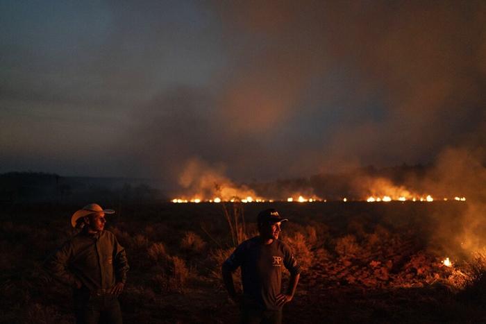 <i>เกษตรกรบราซิล เฝ้าดูไฟป่าที่กำลังคุกคามเข้ามาใกล้ หลังจากช่วยกันขุดคูเพื่อตัดไฟไม่ให้ลามเข้ามายังไร่ที่พวกเขาทำงานอยู่  ในเขตเทศบาลโนวาซานตาเฮลานา รัฐมาตูโกรสซู เมื่อวันศุกร์ (23 ส.ค.) </i>