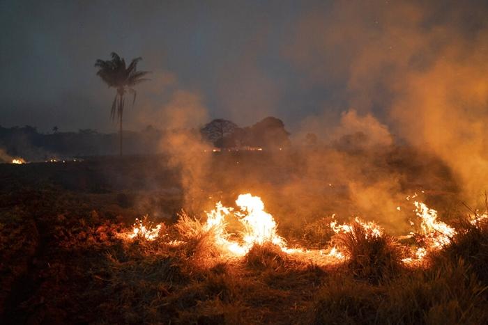 <i>ไฟไหม้ทุ่งแห่งหนึ่งในไร่ ซึ่งตั้งอยู่ในเขตเทศบาลโนวาซานตาเฮลานา รัฐมาตูโกรสซู เมื่อวันศุกร์ (23 ส.ค.) </i>