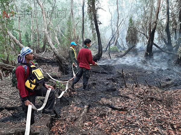ยังไม่ดับ! ไฟป่าพรุทะเลน้อยยังลุกลามต่อเนื่องจากสภาพอากาศและขาดแคลนอุปกรณ์ดับไฟป่า