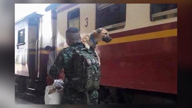 หลังทหารแดนใต้ปลดประจำการ ไม่ทิ้งน้องหมาที่เคยเลี้ยง
