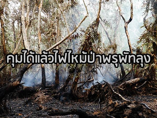 คุมได้ไฟไหม้ป่าพรุพัทลุงให้อยู่ในวงจำกัด นักวิชาการห่วงคนสูดดมควันเสี่ยงมะเร็ง