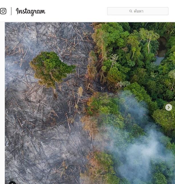 """วิกฤติไฟป่าแอมะซอน! """"ลีโอนาร์โด"""" บริจาค 5 ล้านเหรียญสหรัฐฯ ผ่านมูลนิธิ Earth Alliance"""