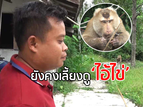 """แวะเยี่ยมครอบครัวเจ้าของ """"ไอ้ไข่"""" ลิงกังขี้โมโห เผยไม่โกรธยังคงเลี้ยงดูต่อไป"""