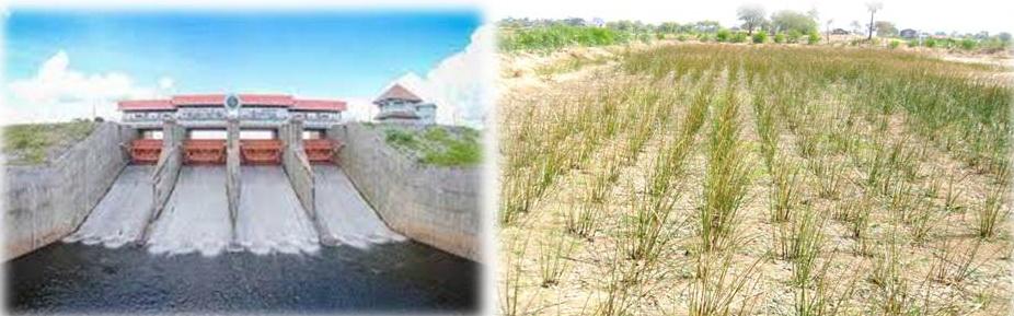 กรมหมอดิน ทำแผนรับมือดินเค็มพื้นที่รอบเขื่อนลำปาว ป้องกันน้ำเค็มกระทบพื้นที่เกษตร