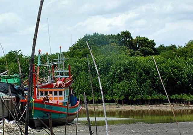 ทลฉ. ใจปล้ำ ทุ่มงบกว่า 600 ล้านบาท ผุดขึ้นตลาดปลา ให้ชาวบ้านรอบท่าเรือใช้แบบฟรีๆไปเลย