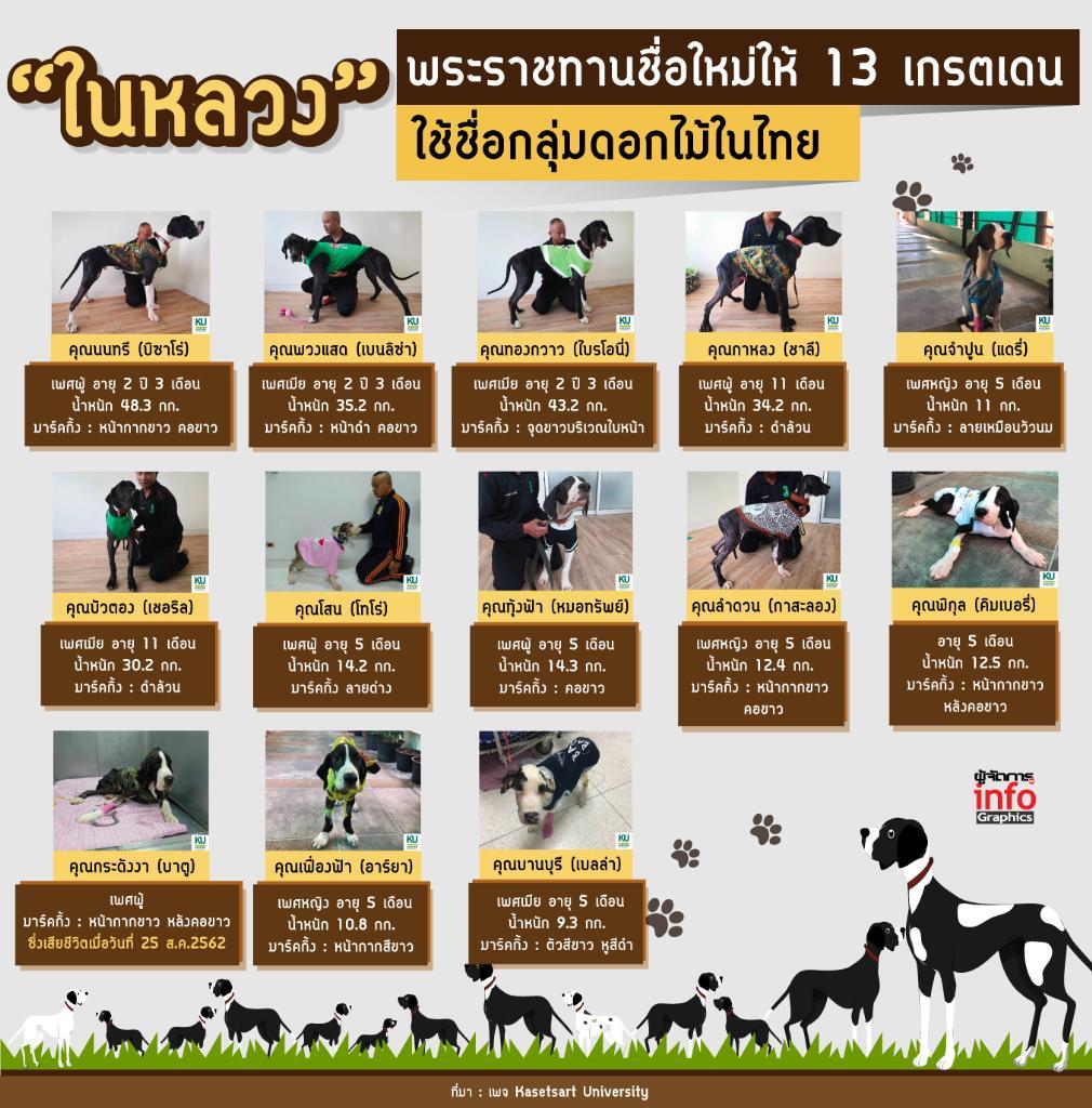 """""""ในหลวง"""" พระราชทานชื่อใหม่ให้ 13 เกรตเดน ใช้ชื่อกลุ่มดอกไม้ในไทย"""